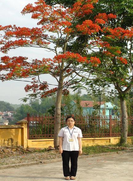 Nữ sinh THPT Chuyên Lê Quý Đôn, em Hà Mỹ Ngọc lần thứ hai đoạt giải khuyến khích toàn quốc cuộc thi viết thư quốc tế UPU.